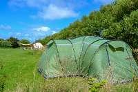 Spring Meadow Farm